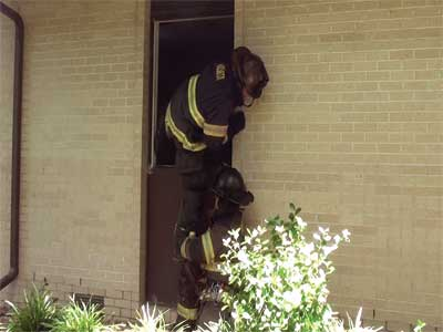 When working in pairs, using the knee of one firefighter will allow the other firefighter to enter the window with a tool already in hand.