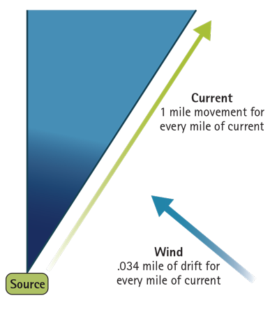 Figure 1. The Effect of Current and Drift on a Spill