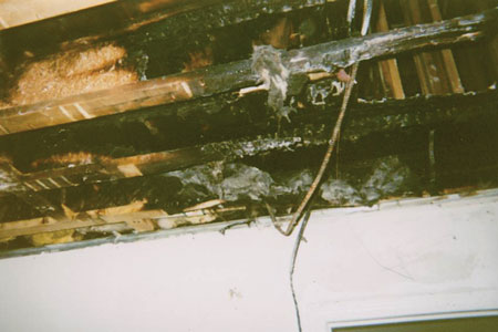 (5) Lightweight wood I-beams. These wood I-beams burned away before the fire department arrived-sawdust and glue held together by two chopsticks.