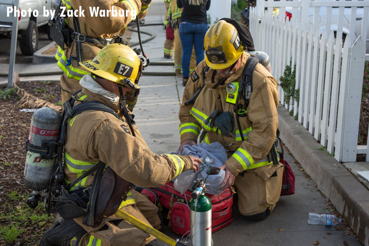 Firefighters treat a cat injured at the scene of a structure fire in Santa Barbara.
