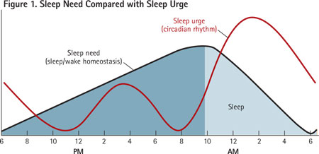 The black line depicts sleep need, which rises through the waking hours and decreases during sleep. The red line depicts a normal circadian rhythm wherein sleep urge is greatest at night; there is also a slighter increase at midday (post-lunch dip).
