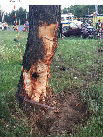 (2) The side impact bar was lodged into and remained in the tree even after vehicle impact.
