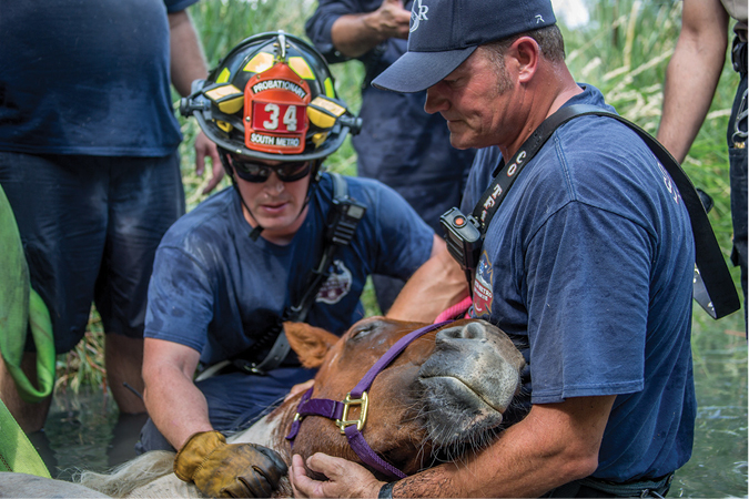 (3) Although HIPPA prevents us from sharing the emotion and compassion that firefighters have for the people they protect, we can share images of animals that need help. Our community wants to connect with the people who make the fire department what it is, and sharing raw emotion is one of the best ways to do it, #SavingCupCake.