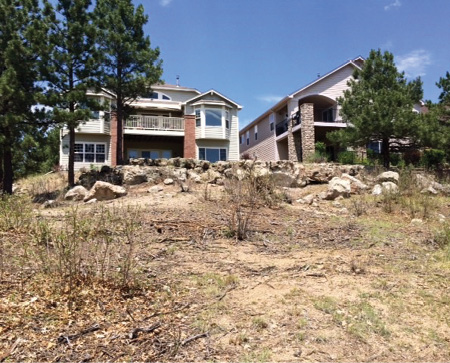 The weeds and brush ran up to the retaining walls of homes in this Colorado neighborhood before being treated by the goats.