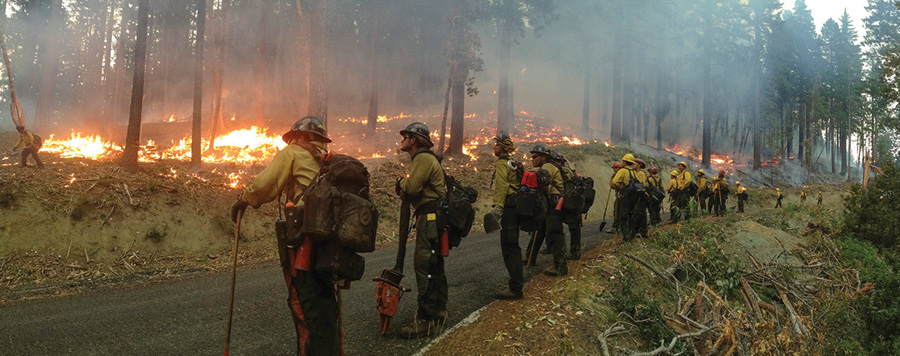 Panorama of the Geronimo Interagency Hotshot Crew as they keep watch on their burnout along a forest road. The Geronimo Hotshots are from the San Carlos Apache Tribal Natural Resources Program in San Carlos, Arizona. (USDA photo by Lance Cheung.)