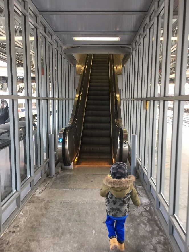 Elevators and escalators transport millions every day. Most elevator incidents involve passengers stuck in a stalled car. Escalator incidents usually involve entanglement of clothing, falls, and hand and foot entrapments, especially with children. (Photos by Brian Butler unless otherwise noted.)