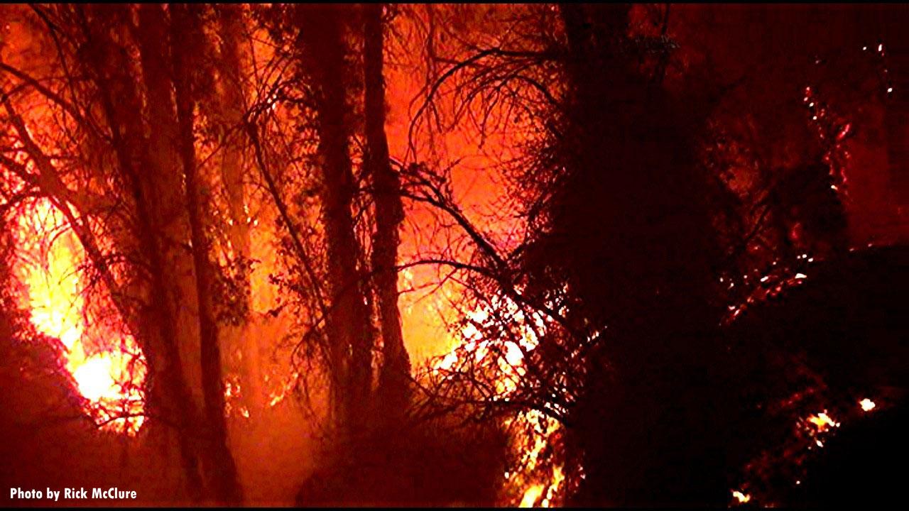 Fire burns trees in Ventura County