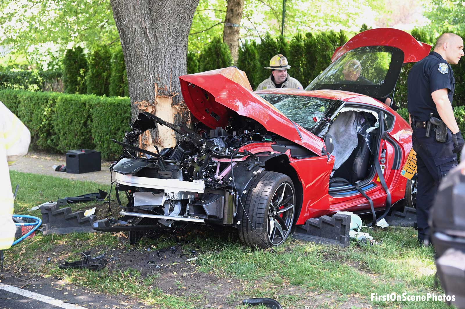 Vehicle smashed against a tree