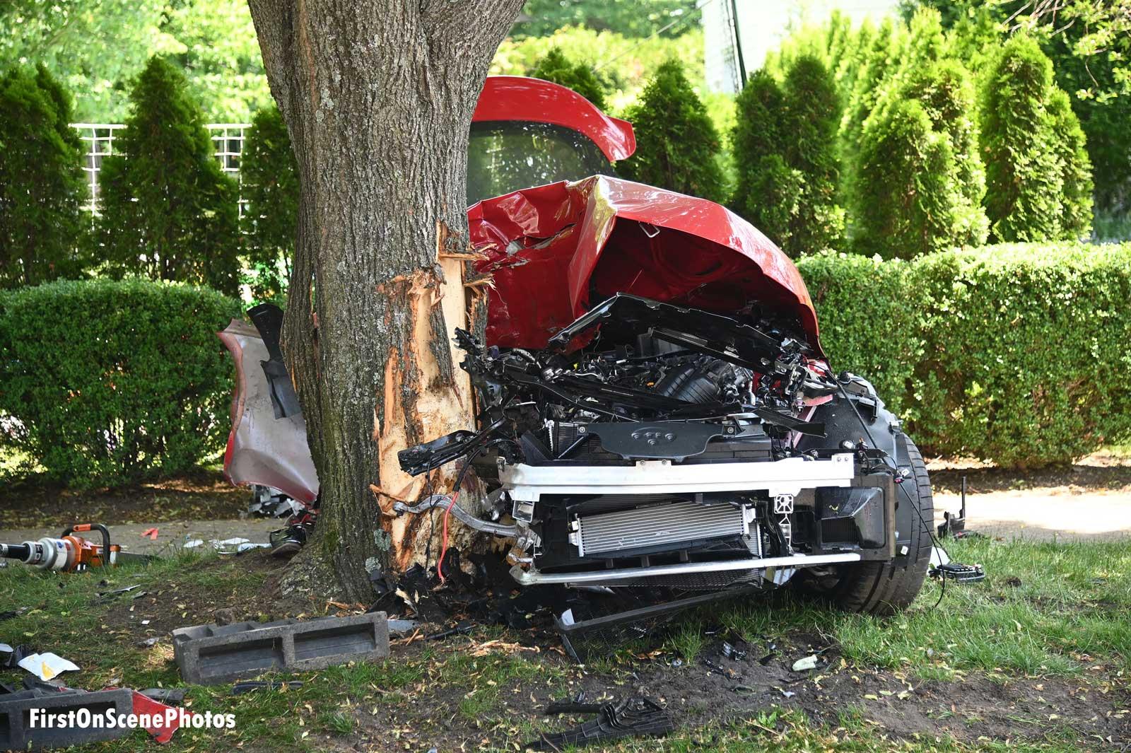 Vehicle smashed against tree
