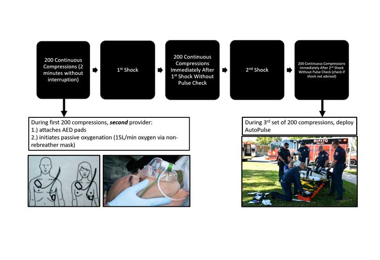 Example protocol for first responder initiated cardiocerebral resuscitation