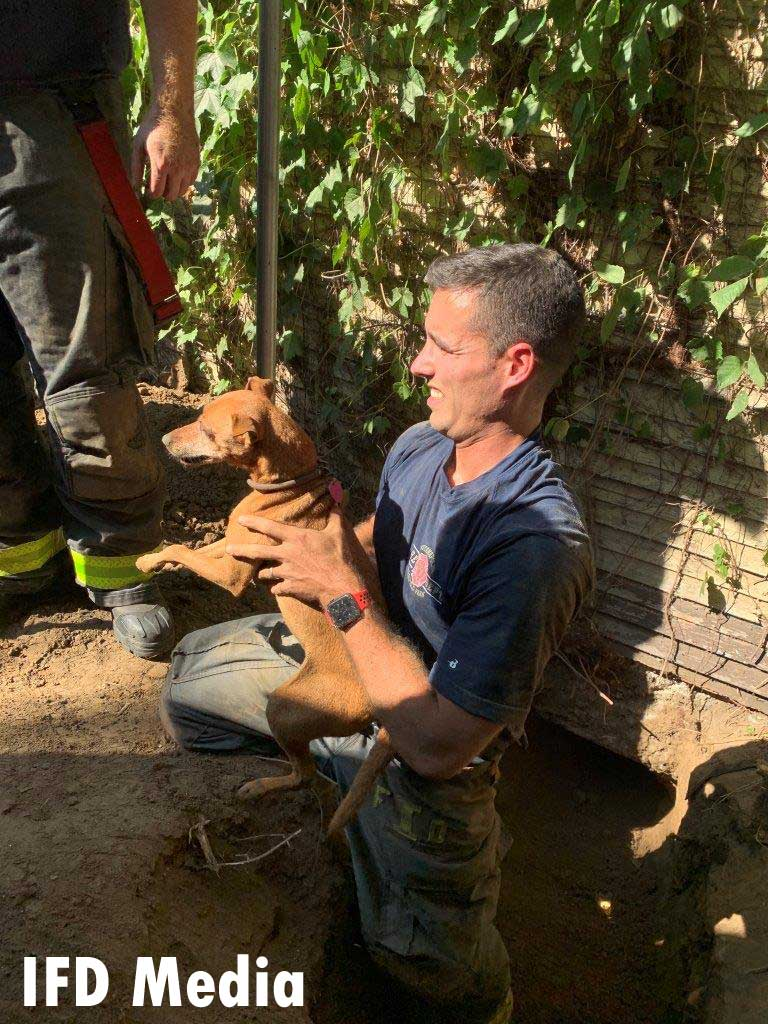 Indy firefighter with rescued dog