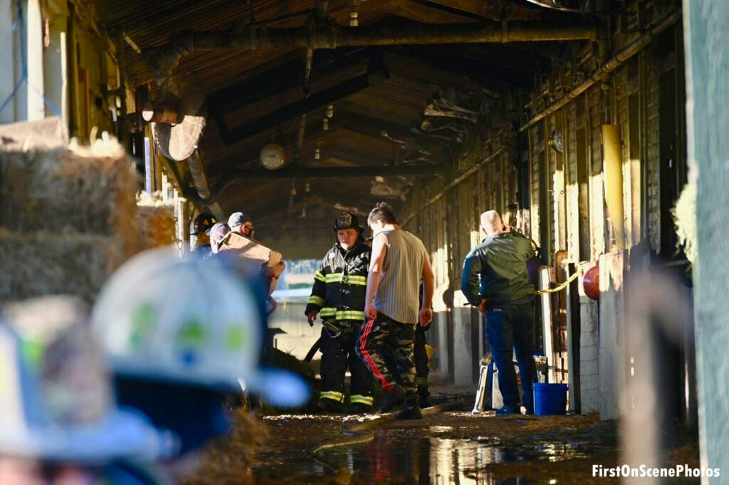 Firefighters at scene of Belmont Park fire