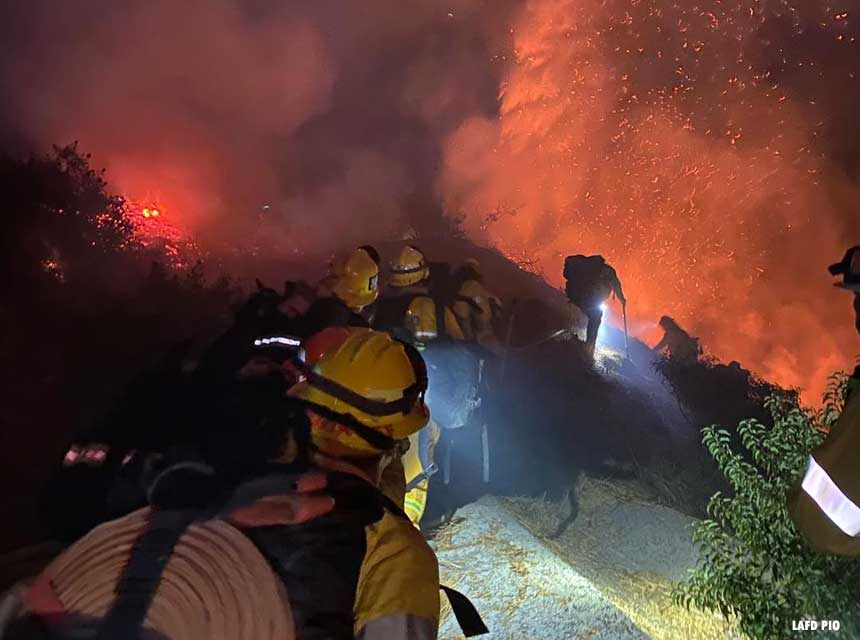 Wildland firefighters in Los Angeles