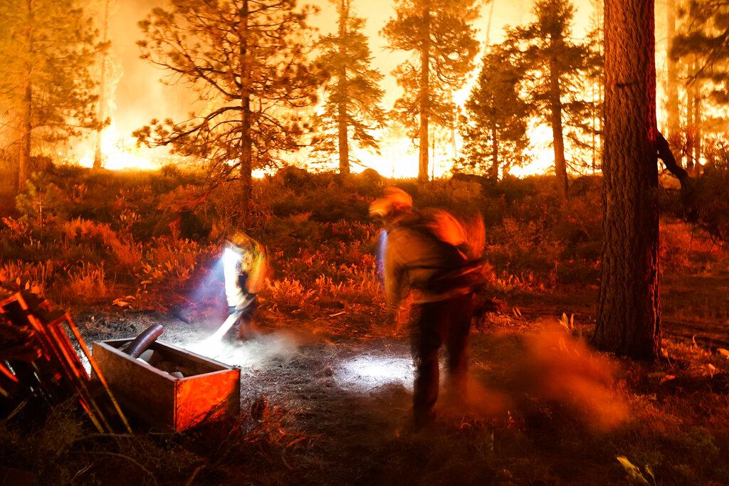 Wildland firefighters at South Lake Tahoe wildfire