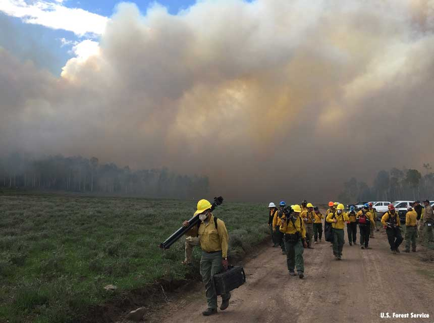 Firefighters operating in the wildland